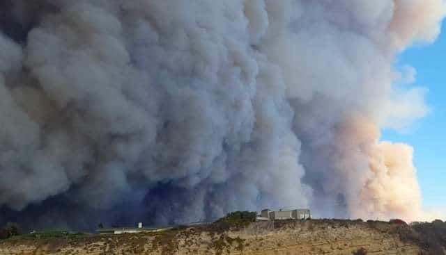 Бушевал пожар, но люди спасали не имущество, а животных! И вы захотите сказать им спасибо…