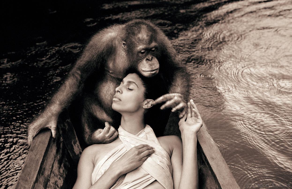 Животные и человек глазами одного