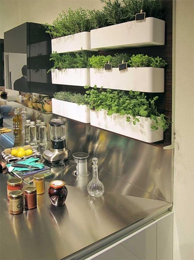 15 идей для домашнего огорода на кухне