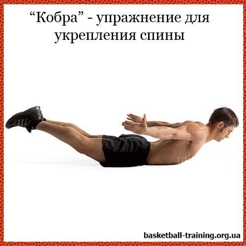 Лучшие упражнения для спины мужчинам