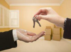 Штрафы для тех, кто сдает квартиру без уплаты налогов: новые разъяснения Минфина