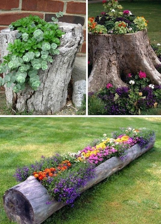 24 Creative Garden Container Ideas | Use tree stumps and logs as planters!:
