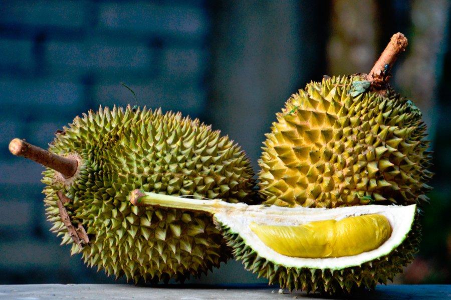 Неприятный запах и волшебный вкус: новый гибрид индонезийского дуриана можно приобрести за 1000 долларов