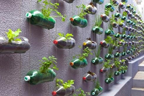 горшки для цветов из пластиковых бутылок, фото с сайта modeldesainrumah.com