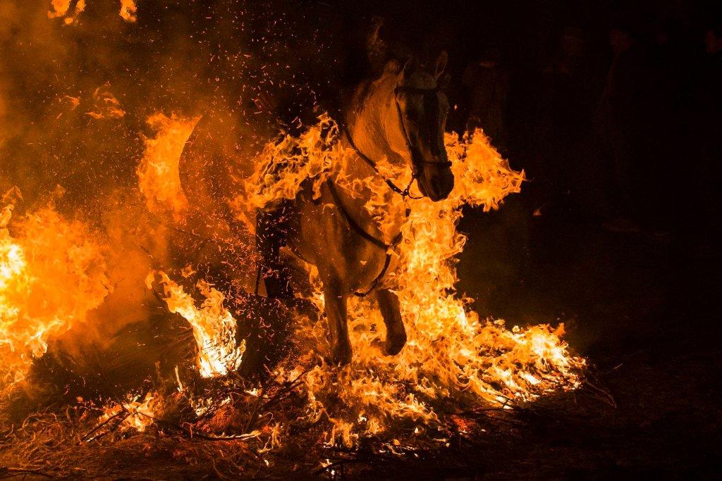 Luminarias - испанский фестиваль огня и животных-10