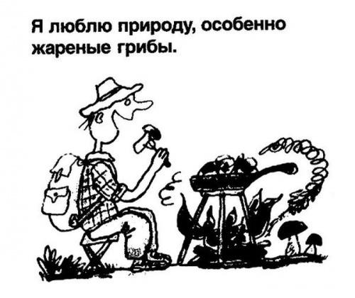 Перлы из школьных сочинений.