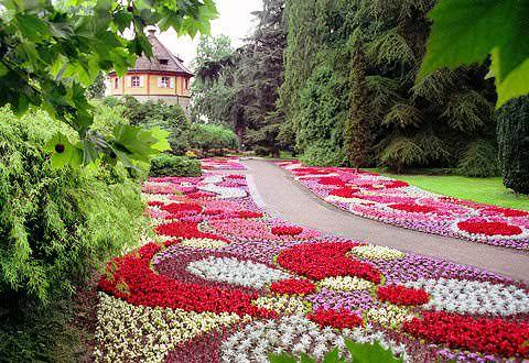 остров цветов на озере