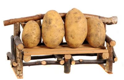 Как сохранить урожай картофе…
