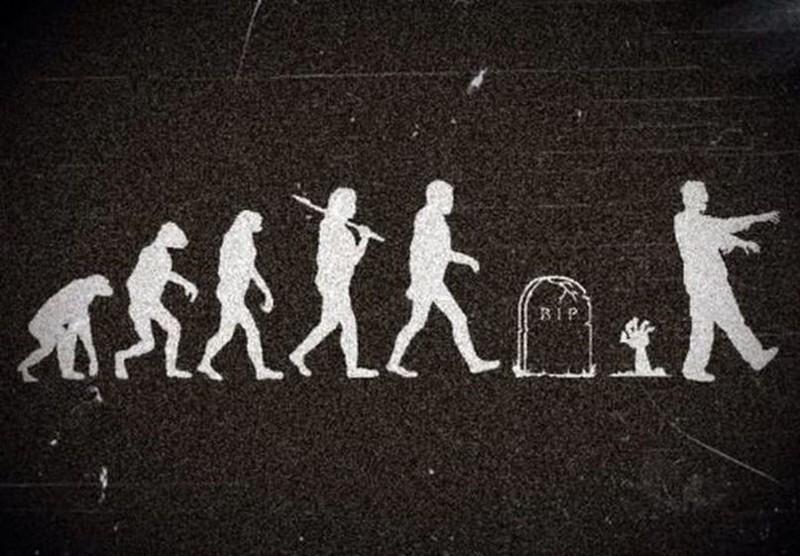 Этого Дарвин представить не мог. история, прикол, юмор