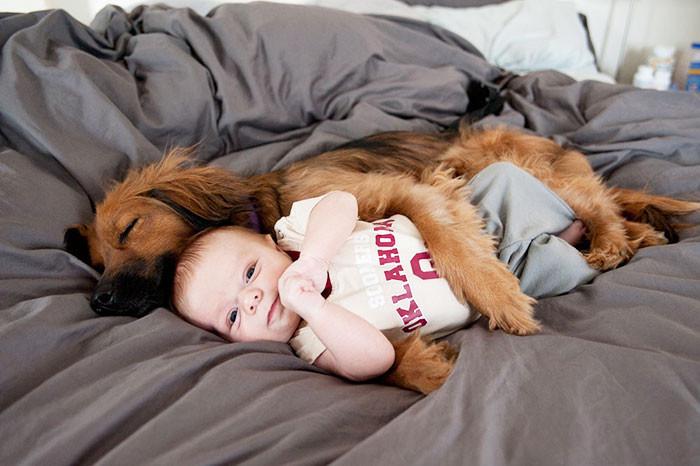 В обнимку  дружба, ребенок, собака