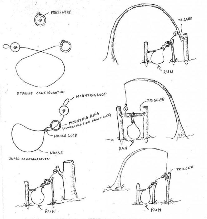 Как сделать ловушку для суслика своими руками
