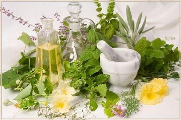 Применение ядовитых растений в медицине