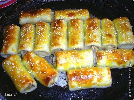 Кулинария Мастер-класс Рецепт кулинарный Мясные трубочки Продукты пищевые фото 1