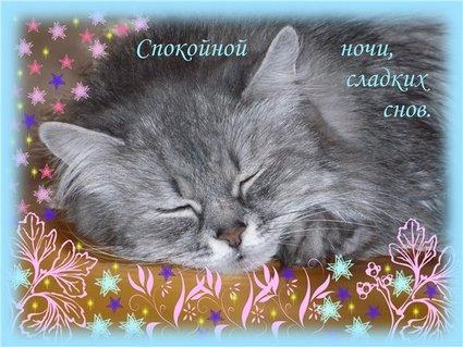 открытки картинки спокойной ночи
