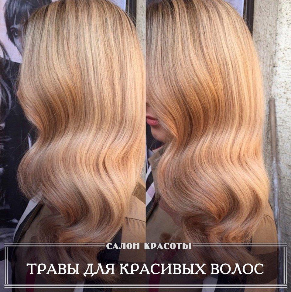 Травы для красивых волос