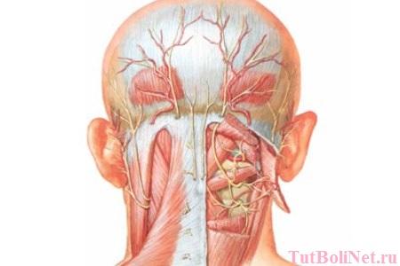 Болит поясница тошнит и кружится голова