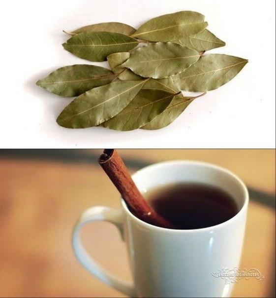 Чай с корицей и лавровым лис…
