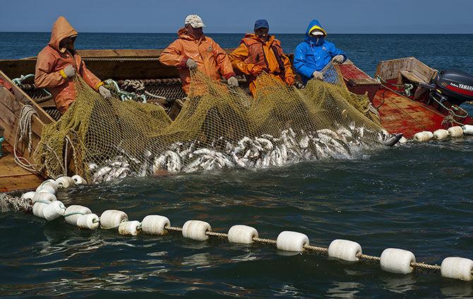 рыбалка для коренных народов