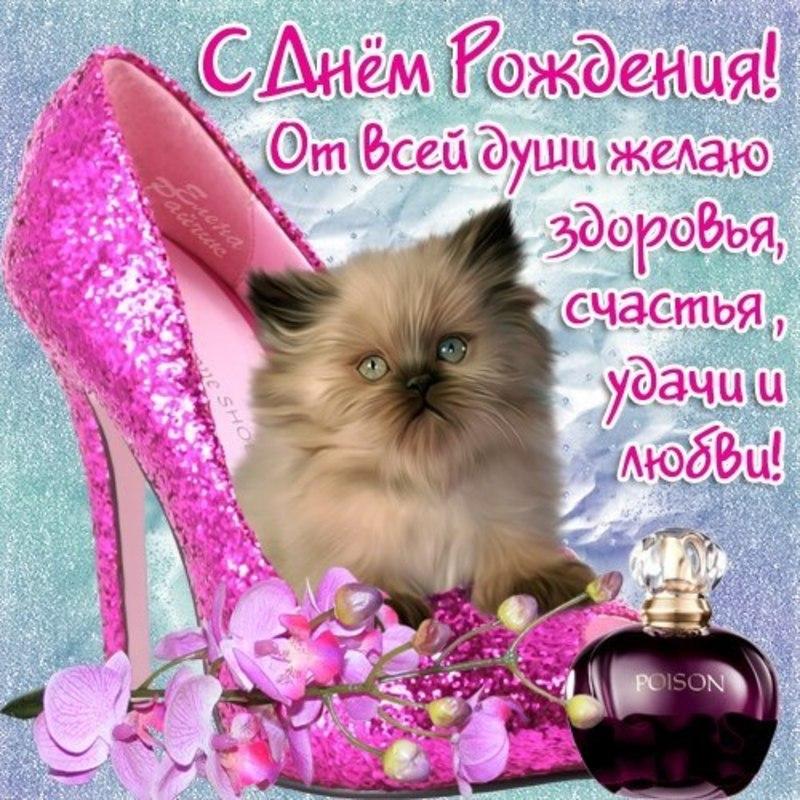 http://mtdata.ru/u25/photo8B5E/20160235698-0/original.jpg