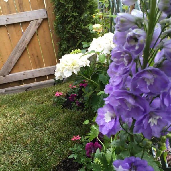 В этом саду вы постоянно окружены множеством прекрасных запахов, цветов и текстур. идеи для дачи, подарки детям, сад