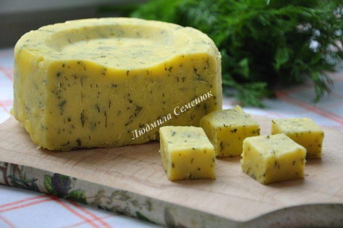 Любимое дополнение к утренней чашечке кофе — Домашний твердый сыр с зеленью