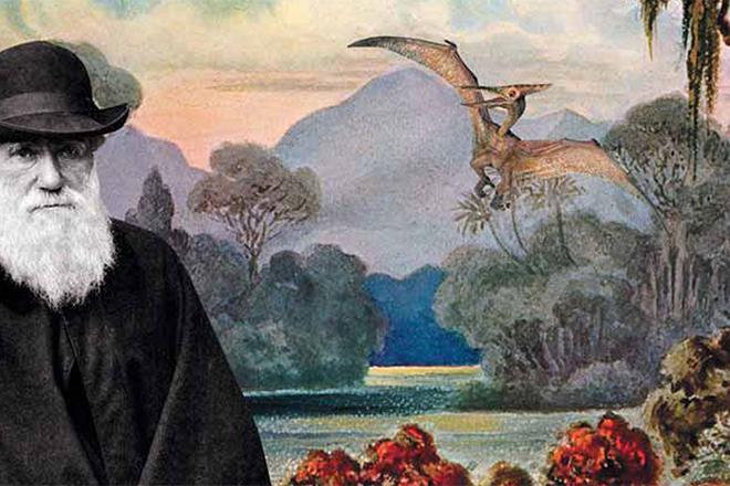 Дарвин не прав: ученые опровергли теорию эволюции