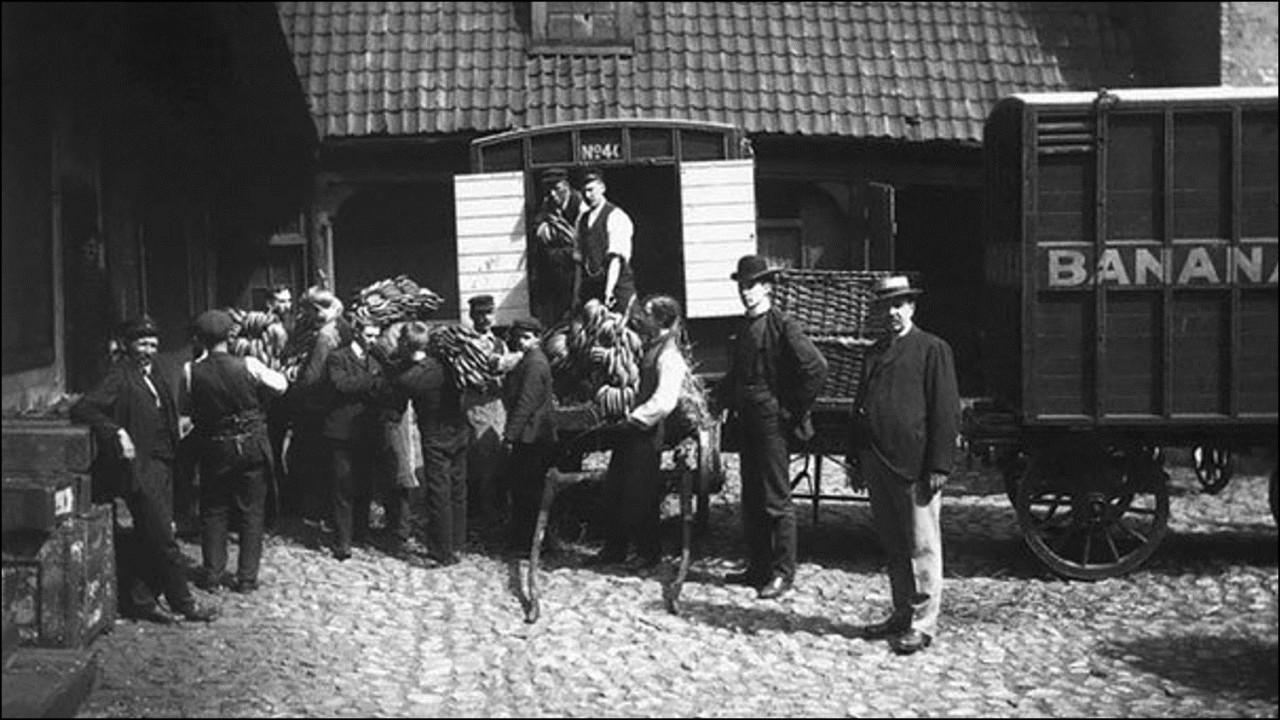 Норвегия впервые в истории получила партию бананов, 1905 Историческая фотография, история, факты