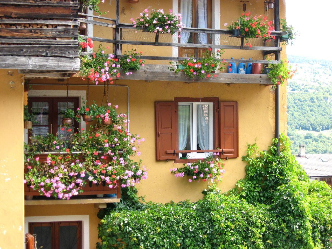 """Очарование """"цветочных"""" балконов. обсуждение на liveinternet ."""