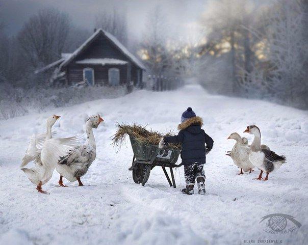 Хороша зима в деревне (фото:)
