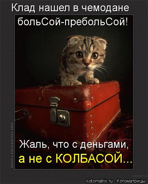 Котоматрица: Жаль, что с деньгами, а не с КОЛБАСОЙ... Клад нашел в чемодане больСой-пребольСой!