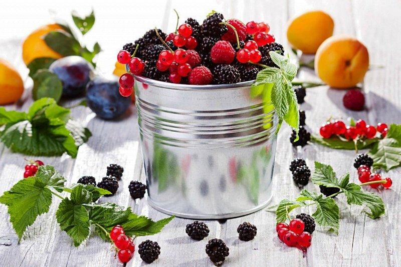 Вы будете удивлены: плодовые косточки иногда полезнее, чем сами фрукты