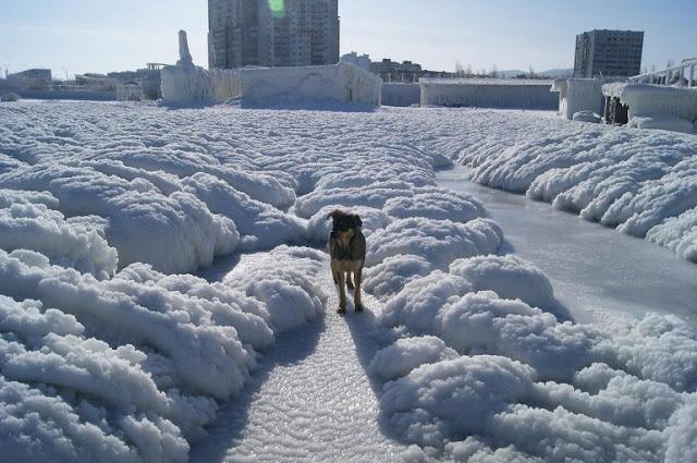 The day after tomorrow или одна неделя портового города (10 фото зимы в эти летние дни)