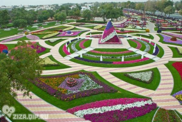 Цветочный рай (18 фото)