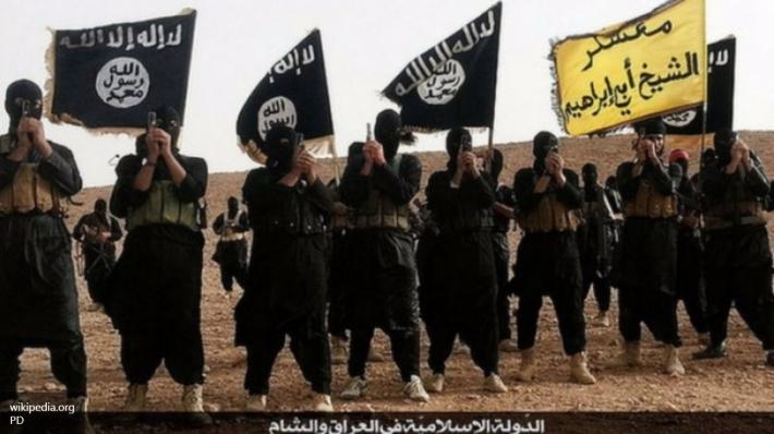 «Исламское государство» потекло из Сирии в Ливию