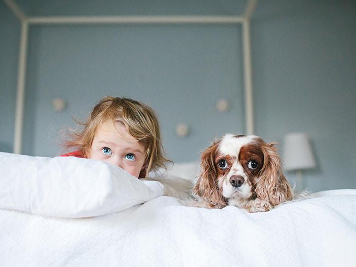 Все время вместе  дружба, ребенок, собака