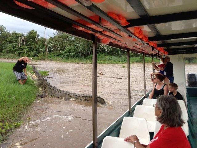 Бесстрашный экскурсовод кормит 5-метровых крокодилов