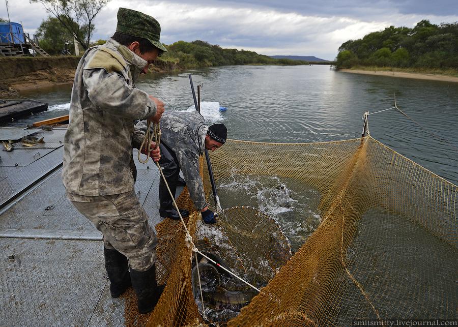 рыболовные товары приморский край