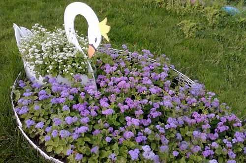 красивый дизайн цветников и клумб