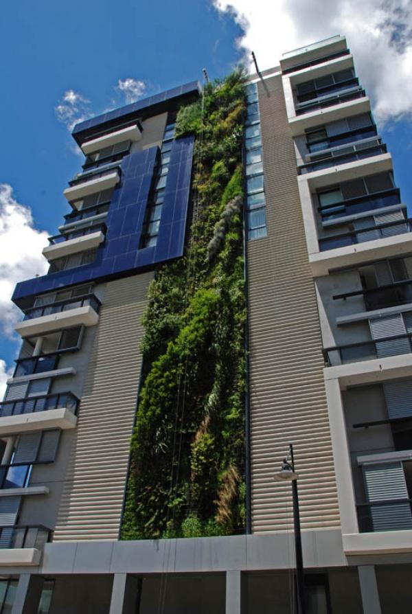 Удивительные вертикальные сады Патрика Бланка