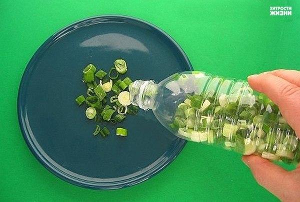 Хитрости жизни: Как сохранить зеленый лук свежим как можно дольше?