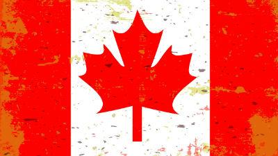 Канада перестала бомбить «Исламское государство» в Сирии и Ираке