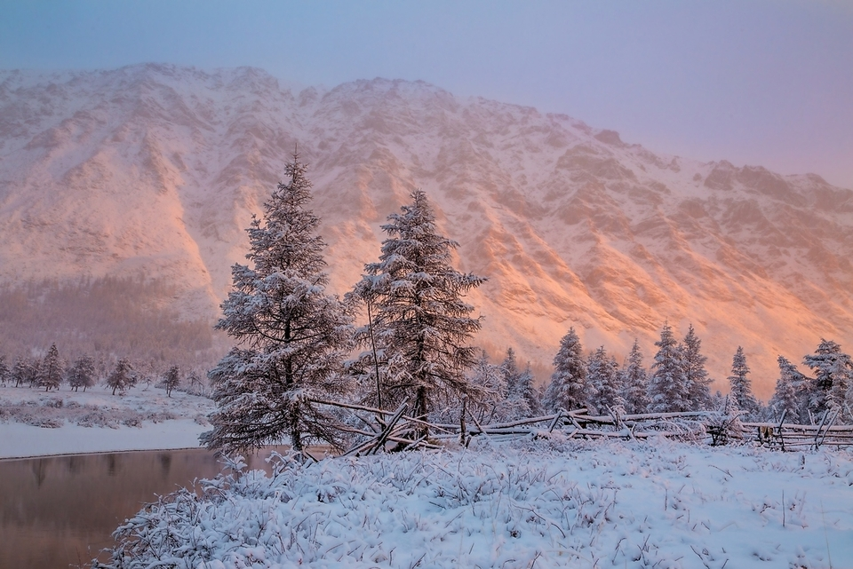 Снежный рассвет