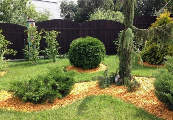 Кора деревьев в ландшафтном дизайне