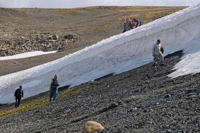 Археологические находки, которые стали возможны благодаря глобальному потеплению