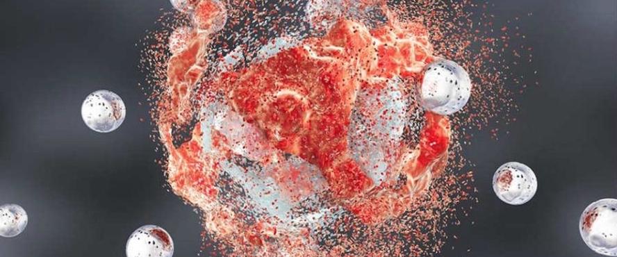 «Троянский наноконь» доводит раковую опухоль до голодной смерти