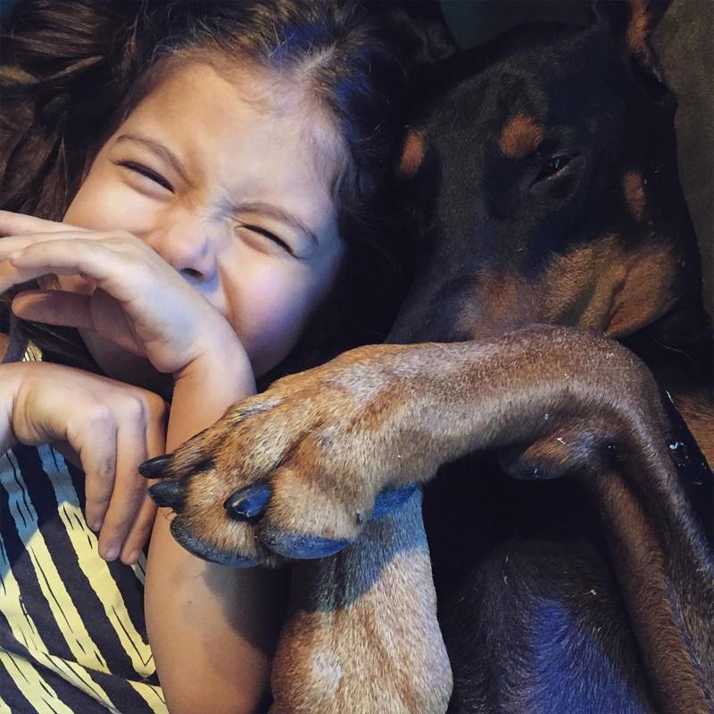 Семья решила взять собаку из приюта девочка, доберман, дружба