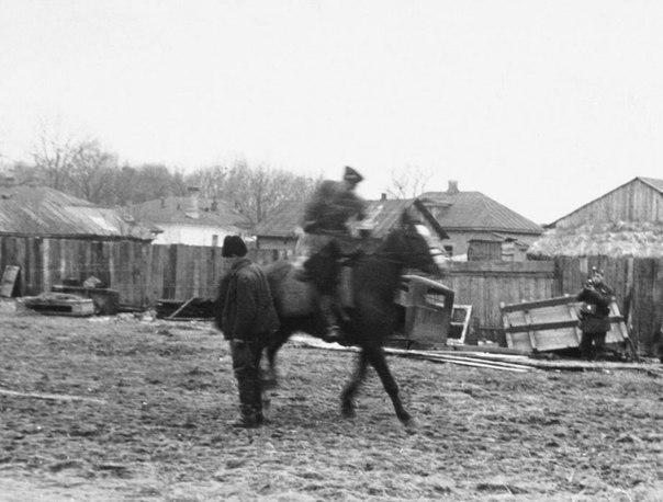 Казак-полицай на потеху венгерским оккупантам рубит шашкой пленных советских партизан. Осень 1941 года, Украина.