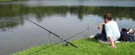 У пруда сидит одинокий рыбак...
