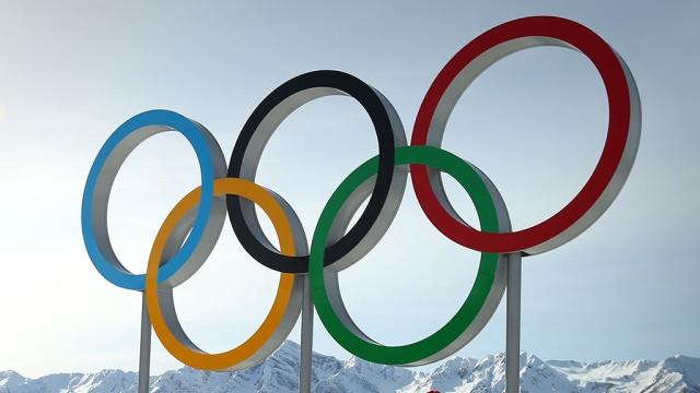 МИД РФ: Перед Олимпиадой в Сочи был предотвращён взрыв самолёта