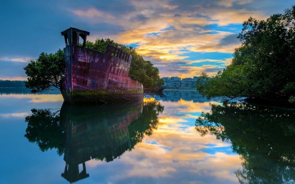 Самые живописные останки брошенных кораблей